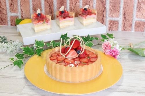 調理製菓学科 調理コースが2年生対象の「製菓特別授業」を実施(苺とレアチーズのシャルロット)