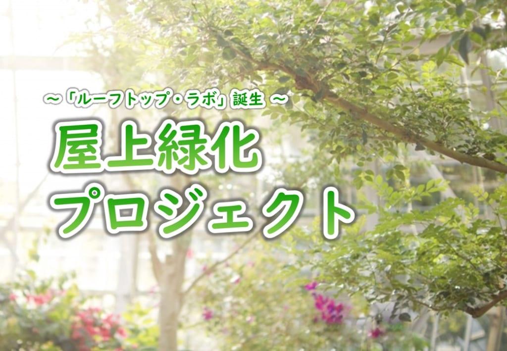 屋上緑化プロジェクト「ルーフトップ・ラボ」を開始します。